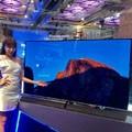 松下将推出首款<font color='red'>OLED电视</font> 抢攻金字塔顶端消费市场