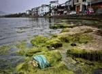洱海水污染治理全面展开