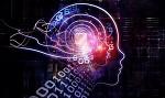 论AI深度学习硬件:谷歌TPU与GPU、FPGA有何差别?