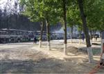 80余辆电动大巴烧毁:未致人员伤亡
