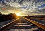 """""""一带一路""""与全方位开放带动国产仪器发展"""