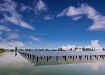 采煤沉陷区上建起的水上太阳能发电站