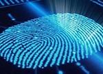 指纹识别成行业新宠 价格战不可避免?