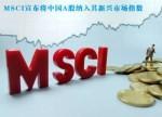国际市场看好中国新能源 比亚迪成首个纳入MSCI自主车企