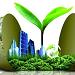 绿色电力证书自愿认购交易实施细则(试行)