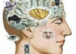 """谷歌最新研究:人类认知心理学开启AI""""黑盒子"""""""