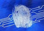 指纹芯片市场高度集中 中小企业难破局