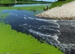 水污染防治法利好环保产业 黑臭水治理商机几何?