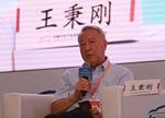 王秉刚:清洁能源汽车技术也应多元化