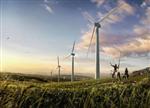 法国上半年新增陆上风力发电容量下降13%