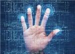 OPPO、vivo崛起 助汇顶/欧菲光笑傲指纹芯片/模组市场
