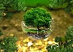 中金环境上半年环保咨询增速达224.7%