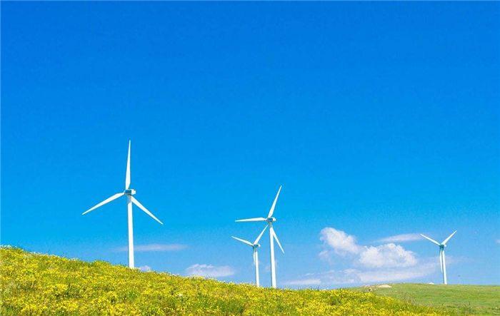 秦海岩:不要让并网标准杀死新能源产业