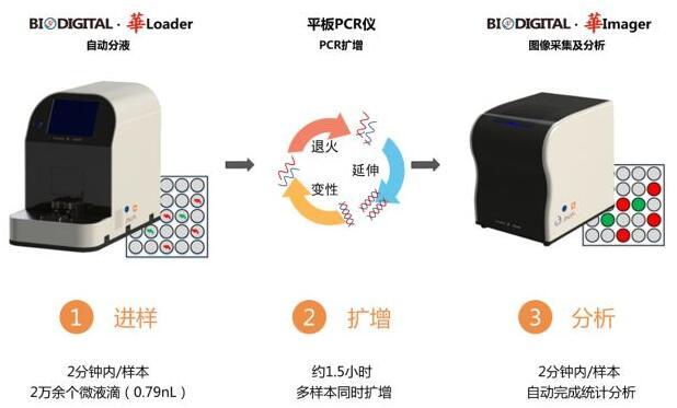 小海龟新一代芯片数字PCR BioDigital·華登场亮相