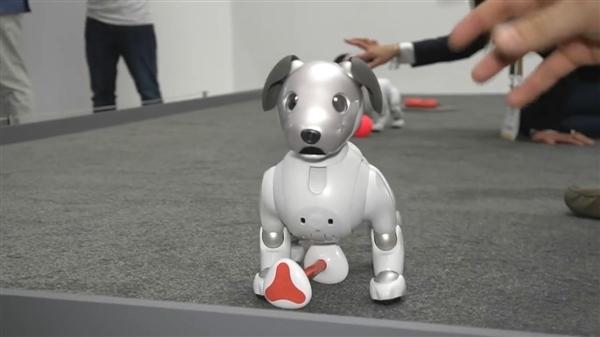 18年磨一狗,索尼人工智能机器狗回来了