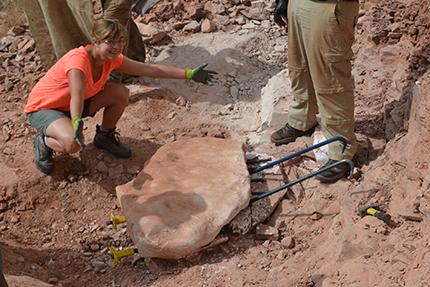 3D扫描和打印正在改变考古研究方式:3D技术解锁恐龙化石的秘密