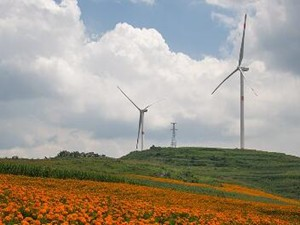 2017年丹麦风力发电占比达43.4%