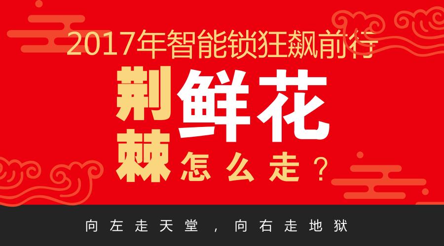 2017智能锁狂飙 2018荆棘鲜花同路