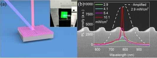 复旦大学研制成功首个全硅激光器