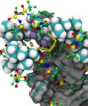 理论与实验结合建立一种新型聚合物锂硫电池