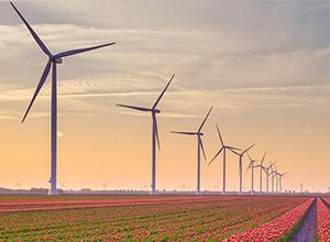 波斯尼亚电力公司寻求风电场项目顾问
