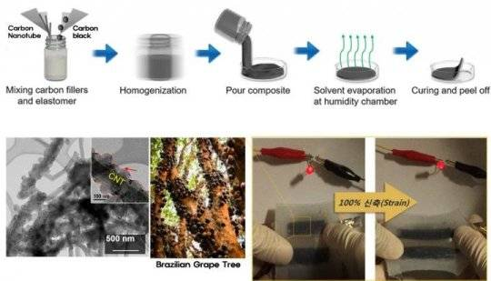 世界上首个可拉伸水性锂离子电池——可穿戴设备的动力之源