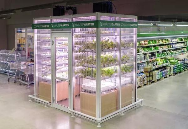 继美国Plenty后 德国一垂直农场也完成2500万美元融资