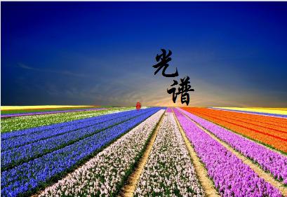 """走出低层次、重复竞争""""怪圈"""" 上海光谱瞄准国际化市场"""