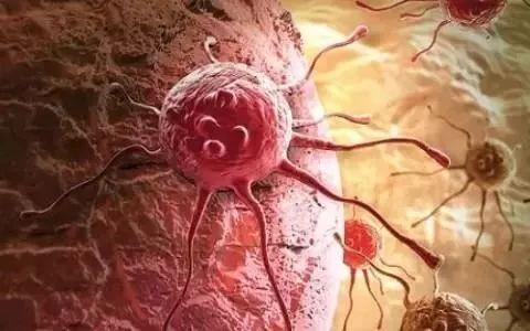 """患癌风险高发并非源于""""基因突变"""",很可能是你的这个系统出了问题"""