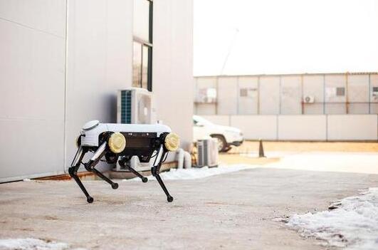 """对标波士顿机器人!浙大发四足机器人平衡性超强 神似黑镜""""金属头"""""""