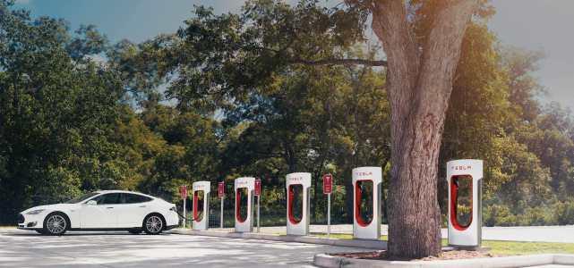 美媒:中国市场对电动车期望高 厂商豪赌新能源风