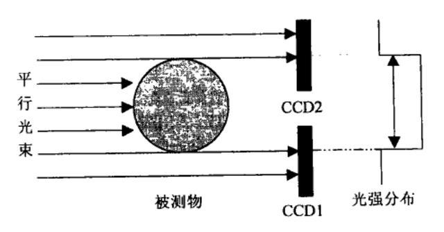 两种应用于大尺寸测量的双CCD测径仪系统的研发