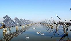 进军太阳能市场 外媒曝壳牌有意收购印度光伏企业