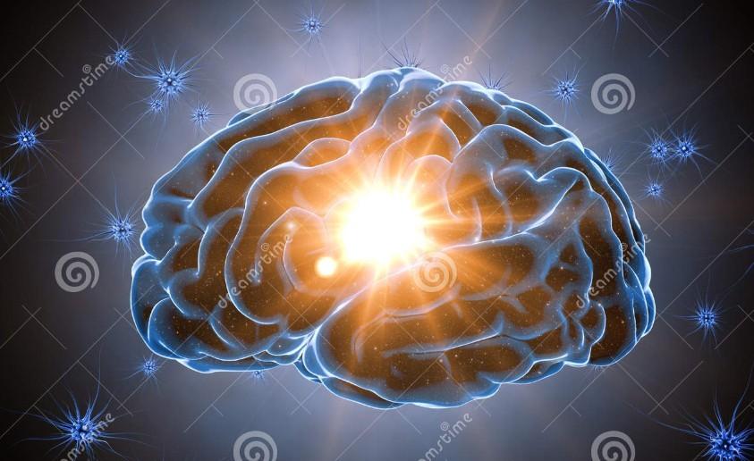 震惊!脑衰老可能比预期的更早