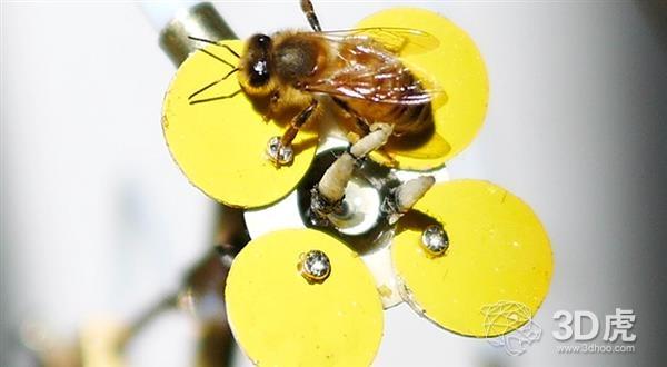 艺术家研发出拯救蜂群数量下降的3D打印机器人花卉