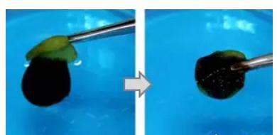 用于微滴操作和油水分离的3D打印仿生超疏水结构