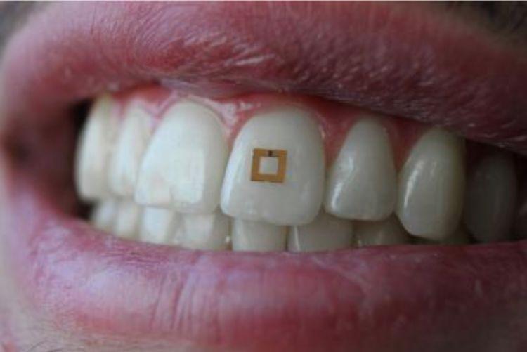 把传感器武装到牙齿,老喊着减肥的你要不要试试看?