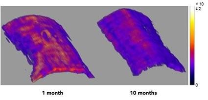 近红外荧光染料可测量皮肤和血管年龄