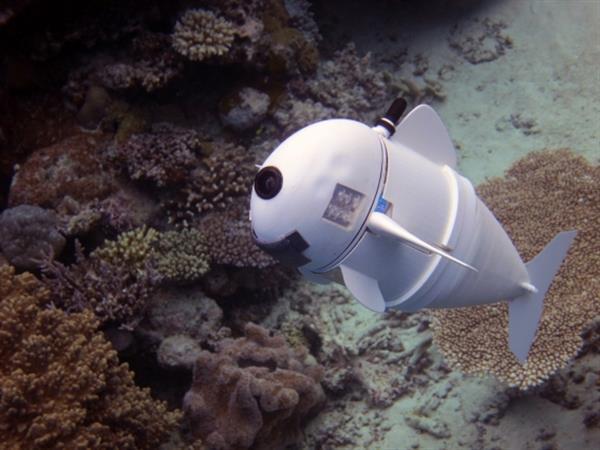 MIT利用3D打印软体机器鱼捕捉水下画面