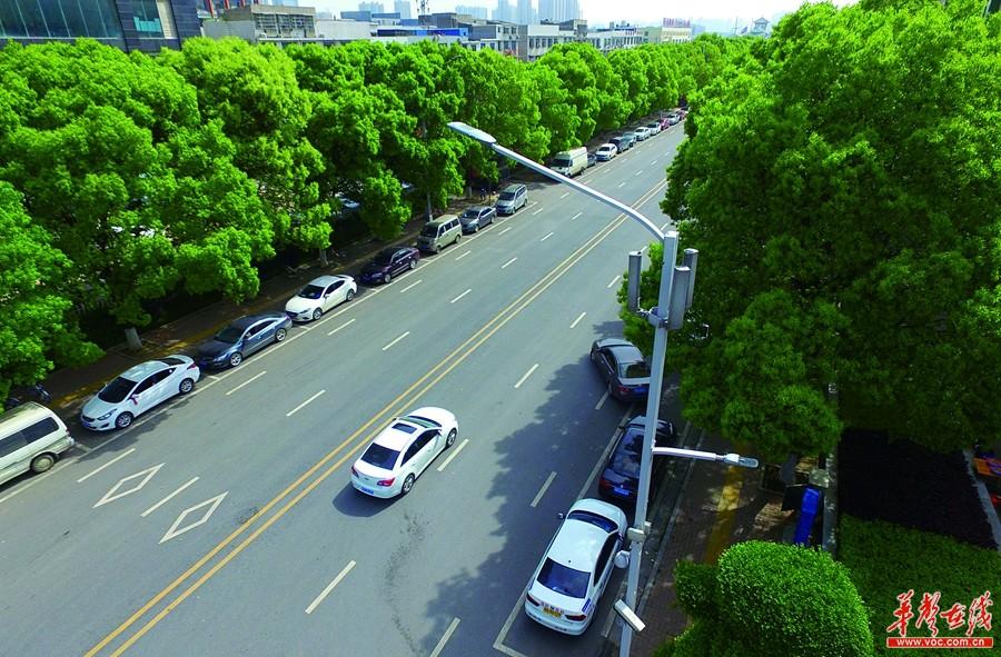 湖南12条路今年运用智慧路灯 路灯可充电、当WIFI