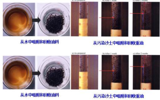 多孔材料中电荷及物质传输