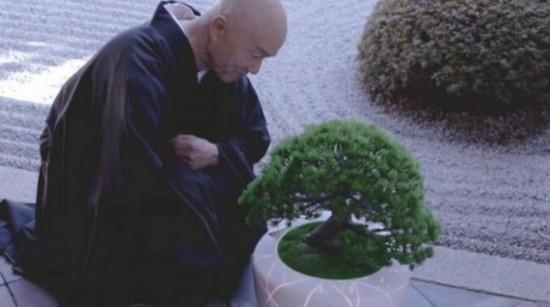 日本惊现黑科技 一个盆栽居然能和人聊天