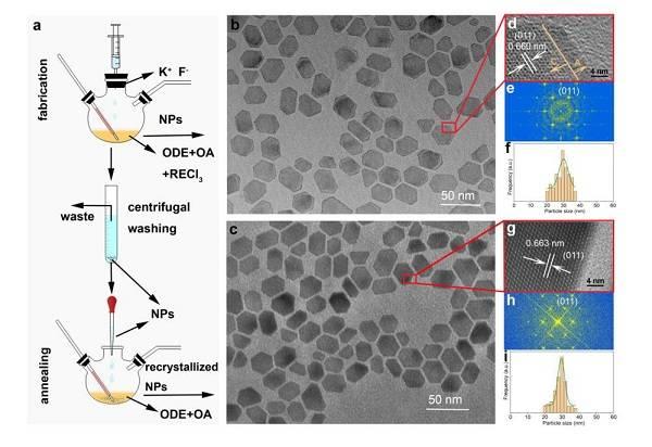 表面缺陷的直接识别及其对上转换纳米粒子光学特性的影响