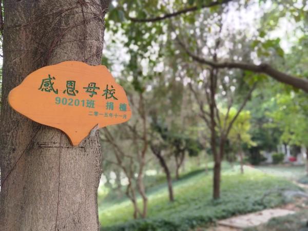 华为畅享8e评测:影音提升,千元畅享双摄