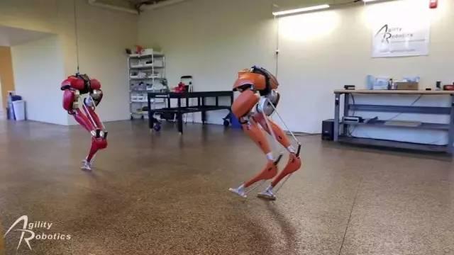 除了波士顿大狗和日本ASIMO 双足机器人Cassie同样惊艳