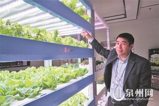 """""""科技农夫""""为植物调制光配方"""