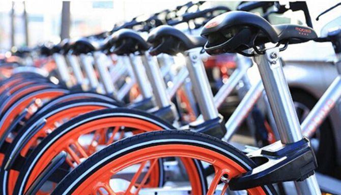 哈罗共享单车处境尴尬:堪比ofo 2.0 会是下一个小蓝单车?