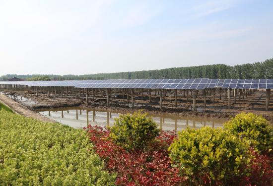 江苏镇江扬中为世界提供光伏等绿色能源案例