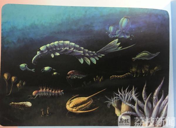 """5亿多年前的古生物""""动""""了起来?原是AR技术来帮忙"""