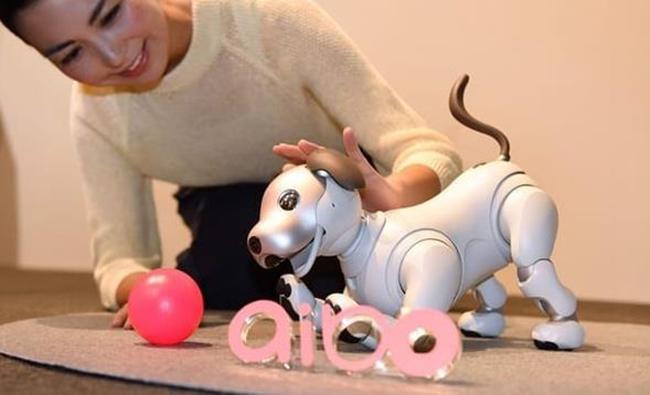 连狗都失业了 索尼Aibo累计出货量万台